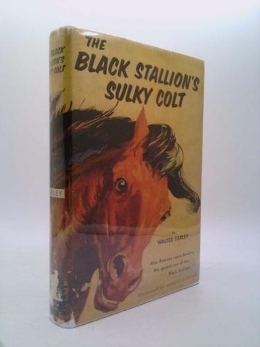 Black Stallion's Sulky Colt